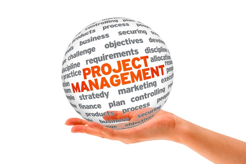 Enormous Enterprise Llc - Project Management